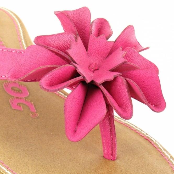 56598f013e37 Rocket Dog Lovely Womens Toe-post Low Wedge Sandal - Fuchsia Pink ...